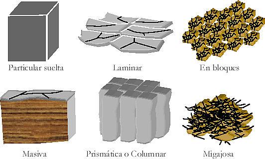 Filippi blog tipos de suelo - Tipos de suelos ...
