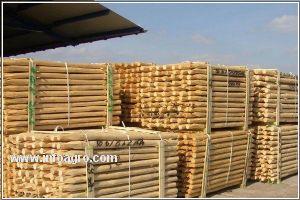 Se vende postes de madera tratada tutores para - Postes de madera tratada ...