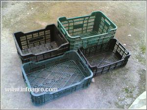 Se vende cajas de plastico europea nuevas y recicladas - Cajas de fruta recicladas ...